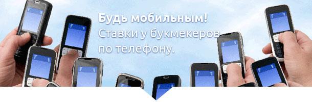 по телефону